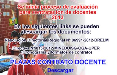 Contrato docente 2013
